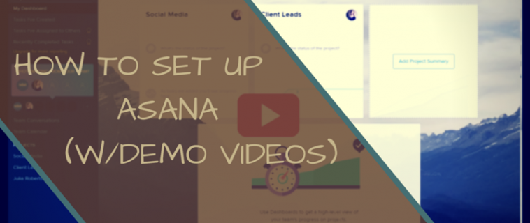 How to Set Up Asana for Your Business (Demo Videos Included!)